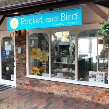 Rocket and Bird